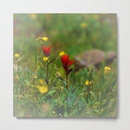 Colorado Wild Flowers Metal Print