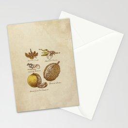 Steampunk Fruit  Stationery Cards