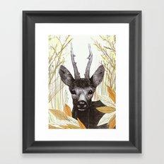 among the leaves (morning) Framed Art Print