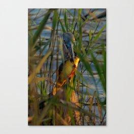BLUE HERON'S FRIDAY SUNDOWN FISH FEAST Canvas Print