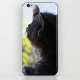 Audros at the Window iPhone Skin
