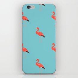 Bonaire Dreamin' iPhone Skin