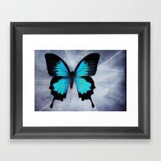 Vibrant Butterfly Framed Art Print