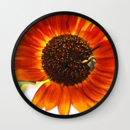 Buzzing the sunflowers Wall Clock