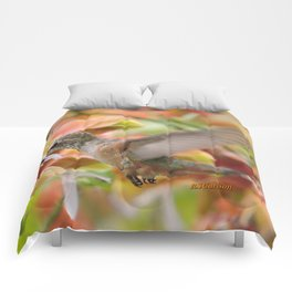Little Ms. Hummingbird in for More Licks Comforters