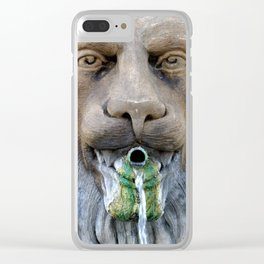 Lion Fountain Clear iPhone Case