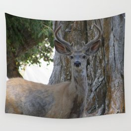 Mule-tail Deer, Buck in Velvet Wall Tapestry