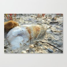 Before The Sea Canvas Print