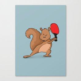 Talented Squirrel Canvas Print