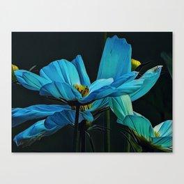 Cool Blue Comos Canvas Print