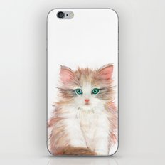 Little Kitten iPhone & iPod Skin
