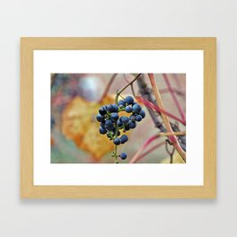 It was a very good year... Framed Art Print
