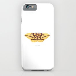 Imperial Moth (Eacles imperialis) iPhone Case