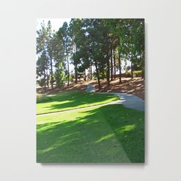 Bella Vista Open Space 2517 Metal Print