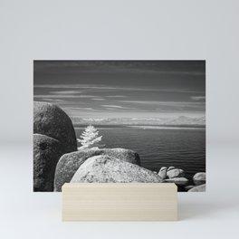 Boulders and tree at Lake Tahoe Mini Art Print