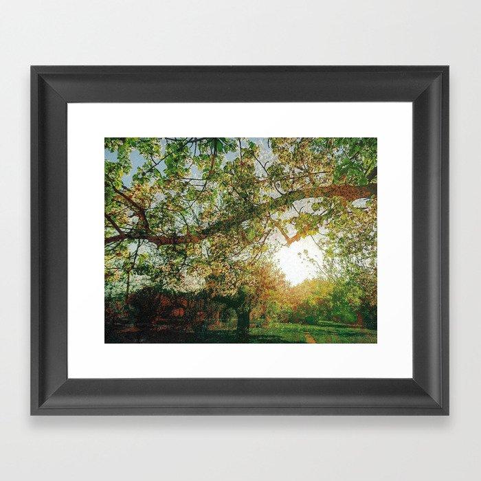 Impressions: Sunset Framed Art Print