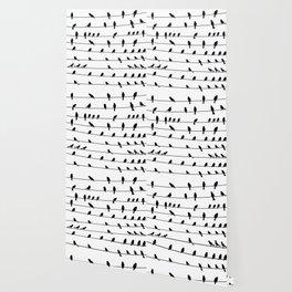 Bird On Wire Wallpaper
