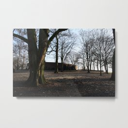 Autmn trees Metal Print