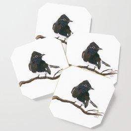 Black Phoebe Watercolor Coaster