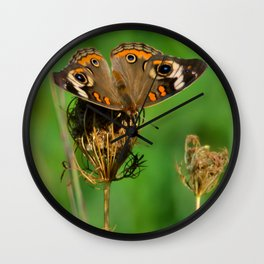 COMMON BUCKEYE BUTTERFLY IN THE FALL (Close-Up) Wall Clock