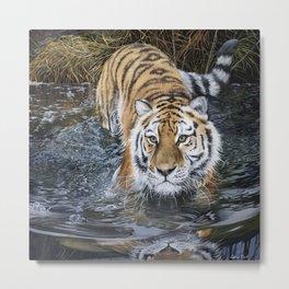 Tiger in the Water - Oil Painting - Original Art Metal Print