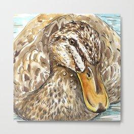 Duck bird Metal Print
