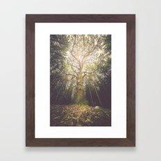 The taller we are Framed Art Print