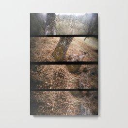 Walkabout Metal Print