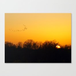 Sunset and cranes natural landscape from France Canvas Print
