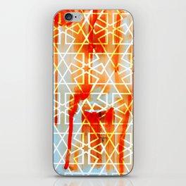 Moroccon Door iPhone Skin