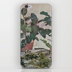 Plantlife - Safari iPhone & iPod Skin