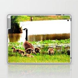 Canada Goose and Goslings Laptop & iPad Skin