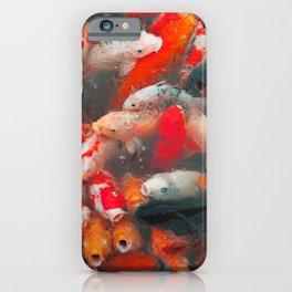 Fortune From The Koi Pond iPhone Case