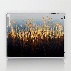 Water Reeds Laptop & iPad Skin