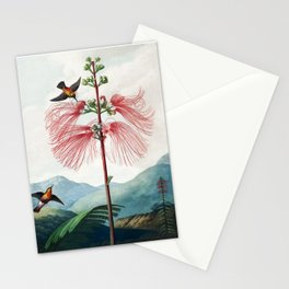 Large Flowering Sensitive Plant - The Temple of Flora Stationery Cards