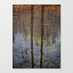 Nature Reflects To Me Canvas Print