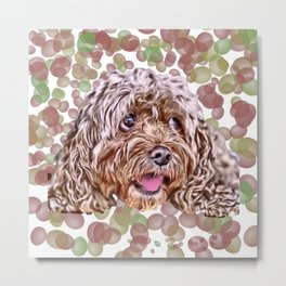 Cocker Spaniel Bubbles Metal Print