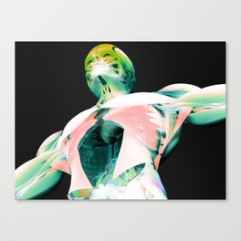 Anatomy 2.1.New 16_6 Canvas Print