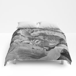 Noonday Farm Cabbage Comforters