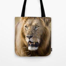 Lion, Masai Mara Tote Bag