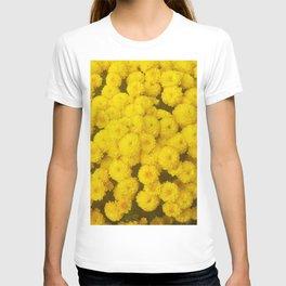 Autumn Gold - Chrysanthemums T-shirt