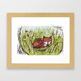 Fox in a Field Framed Art Print