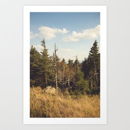 Brocken Mountain Trail Art Print