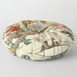 Globi Coelestis Plate 2 Floor Pillow