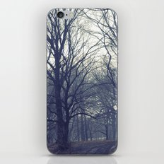 prospect park iPhone & iPod Skin