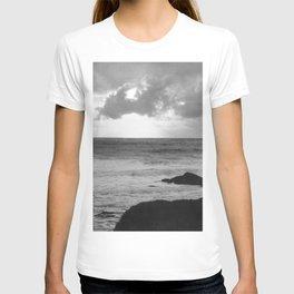 franklin delano T-shirt