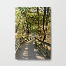 Boardwalk Path Towards Fall Metal Print