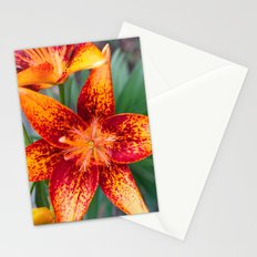 Red & Orange Stationery Cards