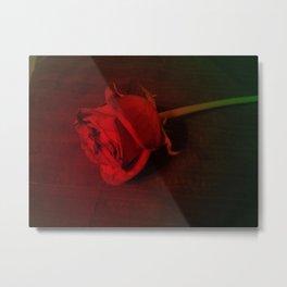 Rose #5 Metal Print