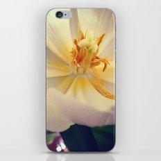 'TULIP' iPhone & iPod Skin